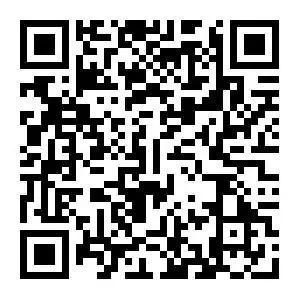 河南地税网上办税平台APP下载二维码